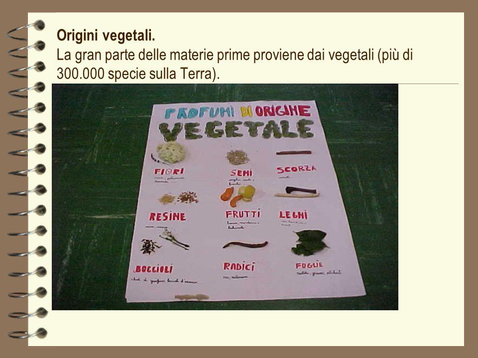 Origini vegetali.
