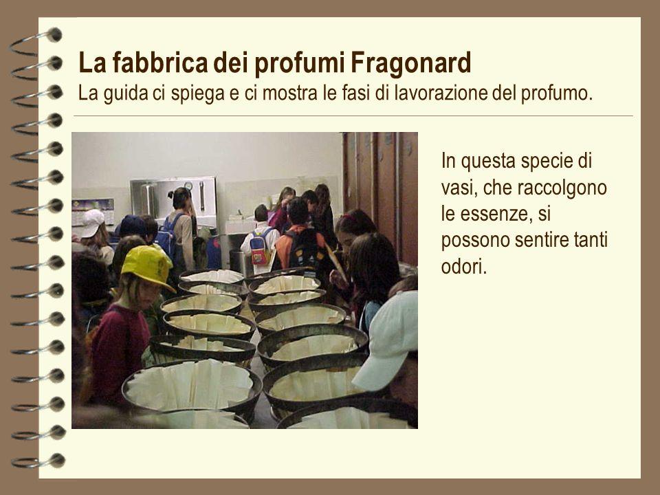 La fabbrica dei profumi Fragonard La guida ci spiega e ci mostra le fasi di lavorazione del profumo.