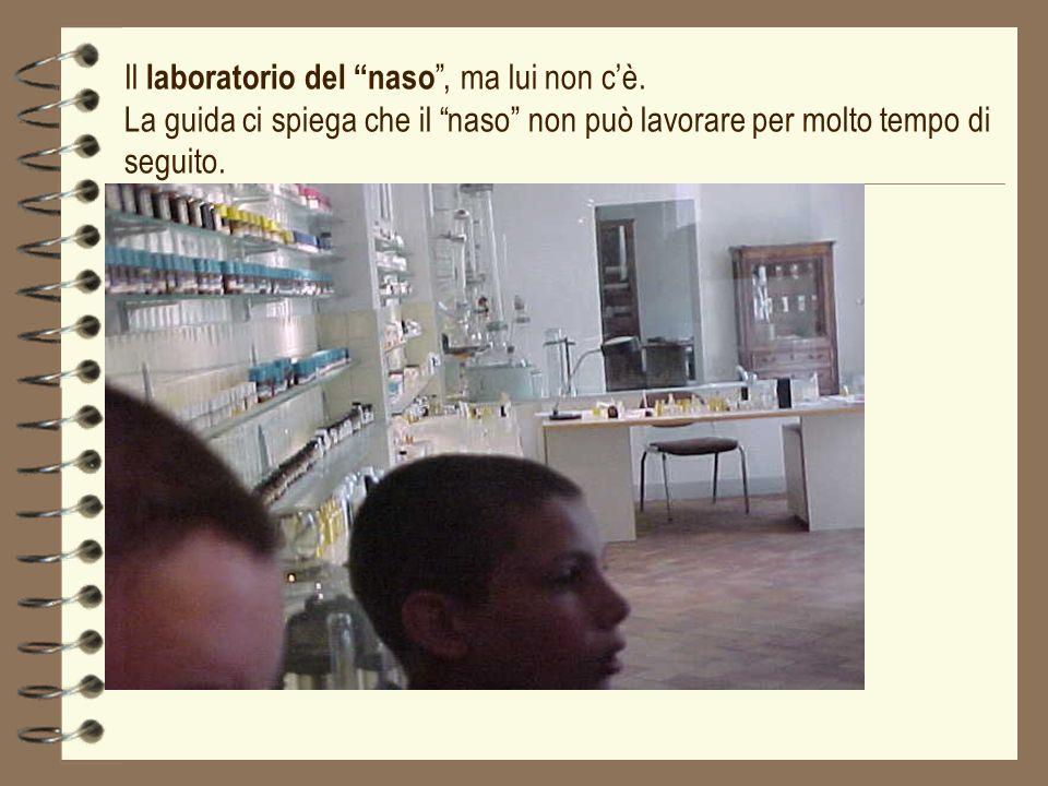 Il laboratorio del naso , ma lui non c'è