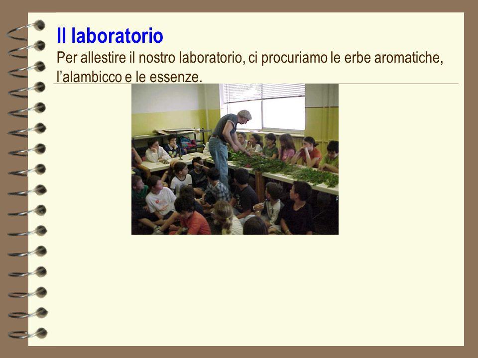 Il laboratorio Per allestire il nostro laboratorio, ci procuriamo le erbe aromatiche, l'alambicco e le essenze.