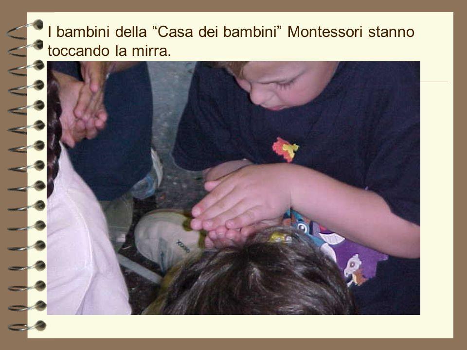 I bambini della Casa dei bambini Montessori stanno toccando la mirra.