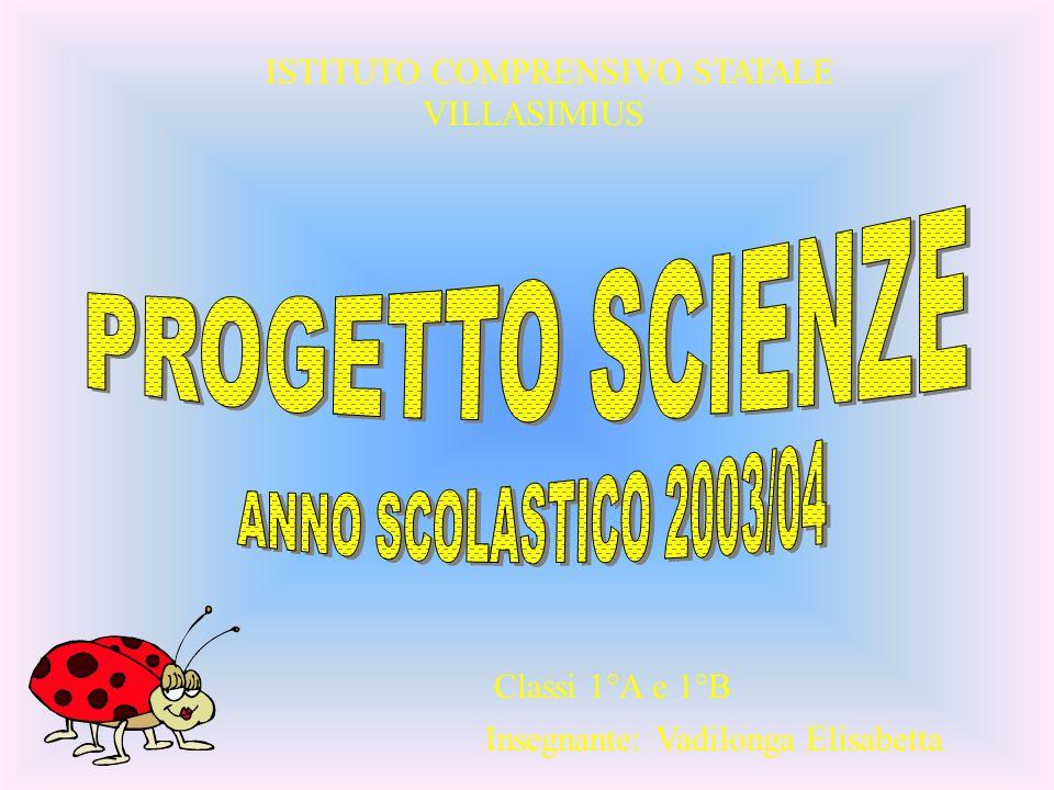 PROGETTO SCIENZE ANNO SCOLASTICO 2003/04 ISTITUTO COMPRENSIVO STATALE