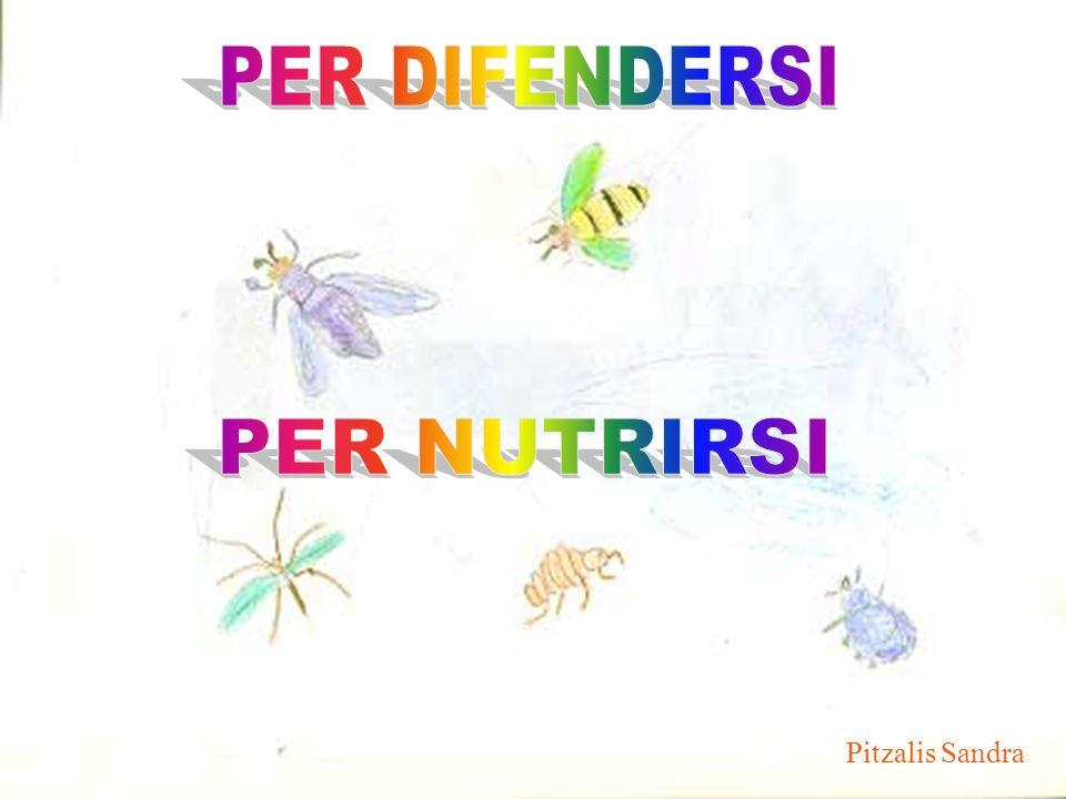 PER DIFENDERSI PER NUTRIRSI Pitzalis Sandra