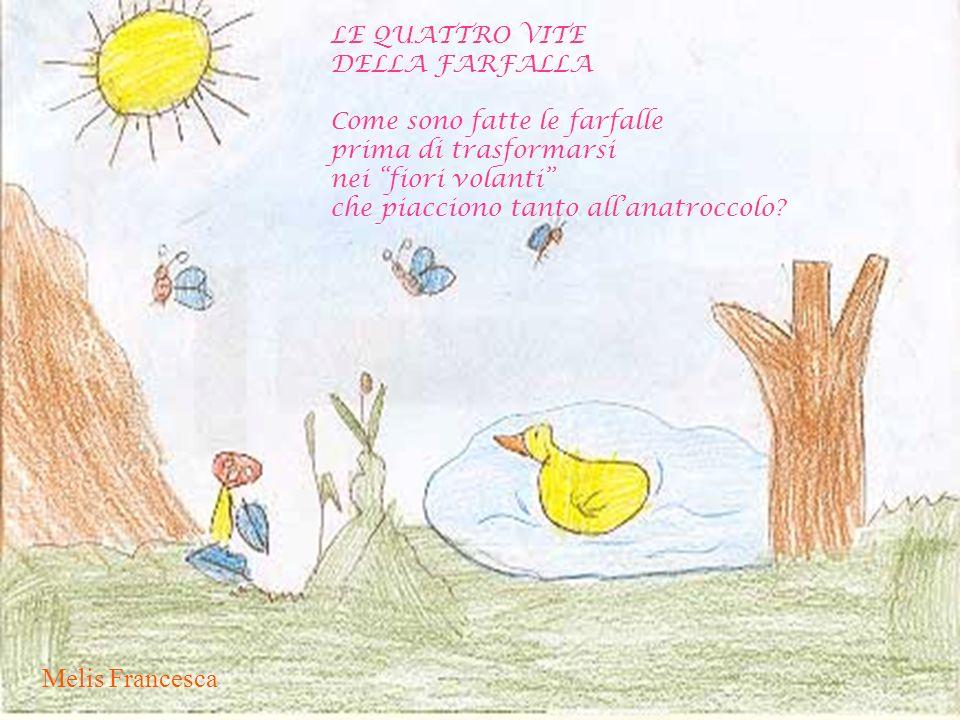 Melis Francesca LE QUATTRO VITE DELLA FARFALLA