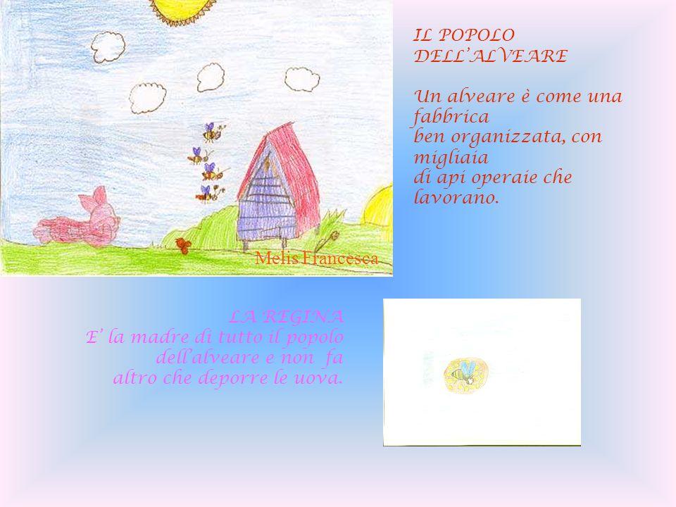 Melis Francesca IL POPOLO DELL'ALVEARE Un alveare è come una fabbrica