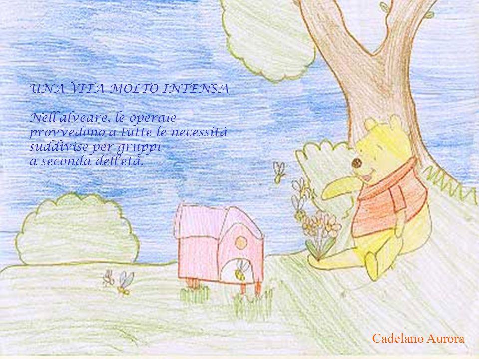 Cadelano Aurora UNA VITA MOLTO INTENSA Nell'alveare, le operaie