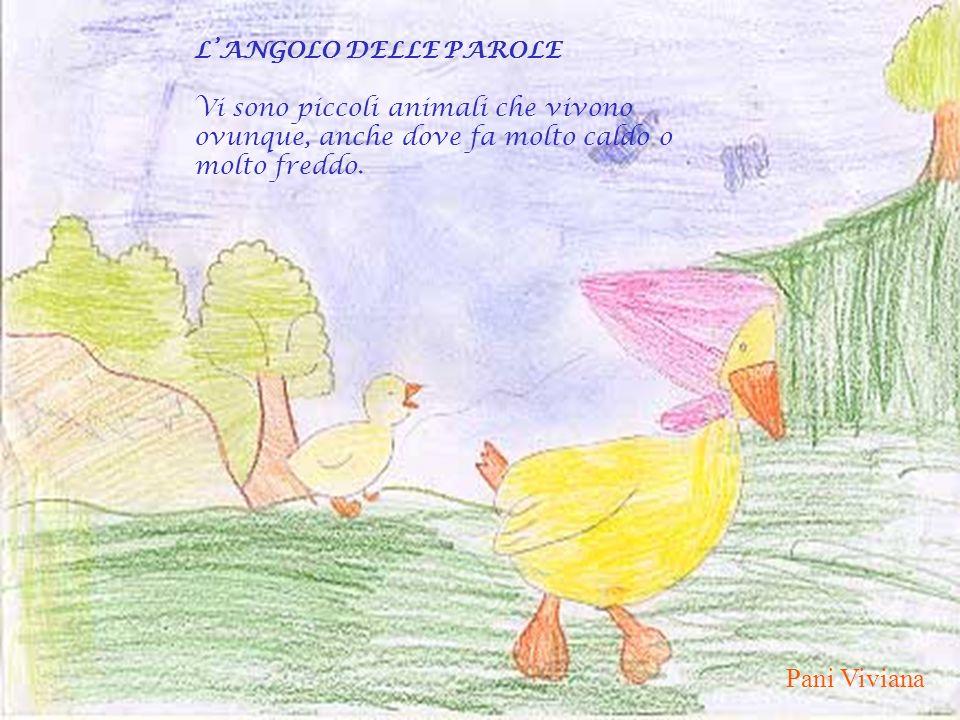 Pani Viviana L'ANGOLO DELLE PAROLE Vi sono piccoli animali che vivono