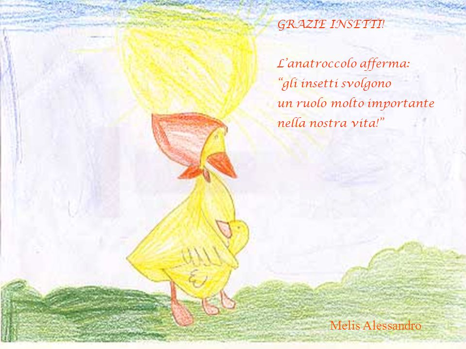 Melis Alessandro GRAZIE INSETTI! L'anatroccolo afferma: