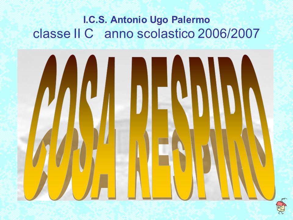 I.C.S. Antonio Ugo Palermo classe II C anno scolastico 2006/2007