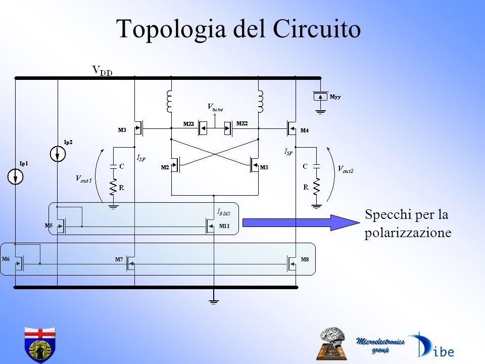 Topologia del Circuito