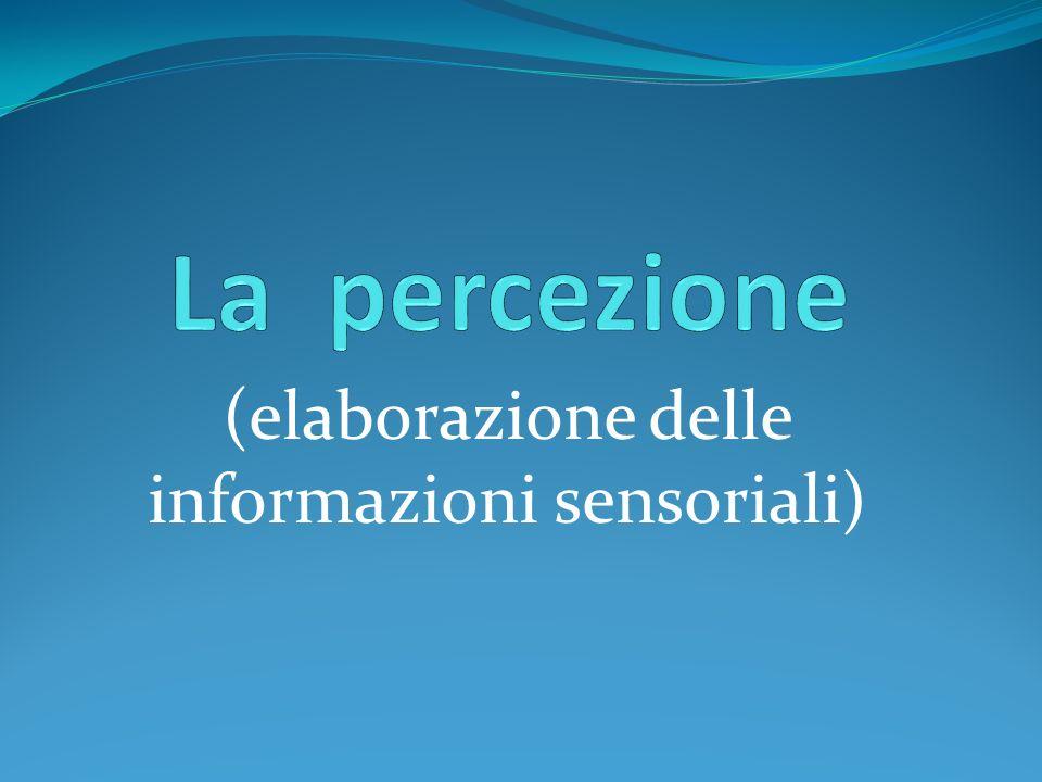 (elaborazione delle informazioni sensoriali)