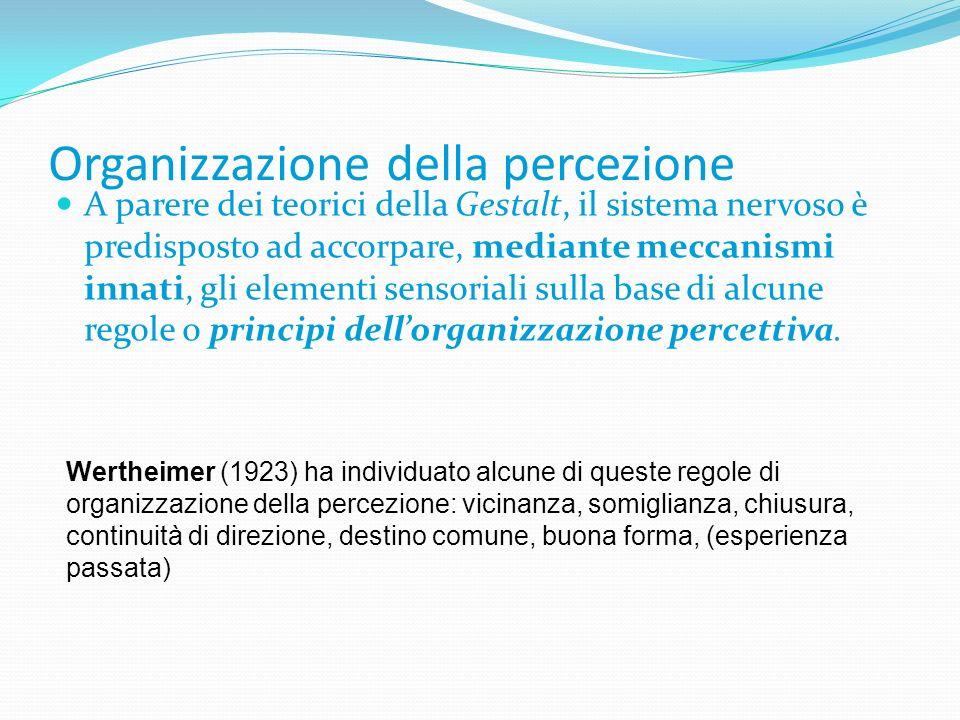 Organizzazione della percezione