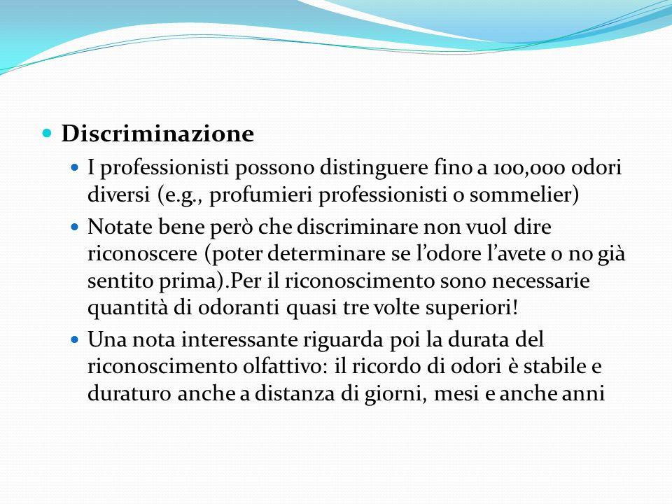 Discriminazione I professionisti possono distinguere fino a 100,000 odori diversi (e.g., profumieri professionisti o sommelier)