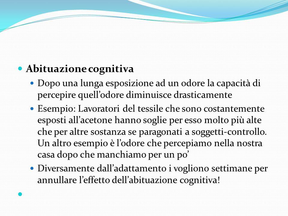 Abituazione cognitiva