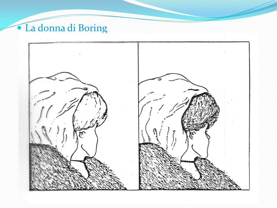 La donna di Boring