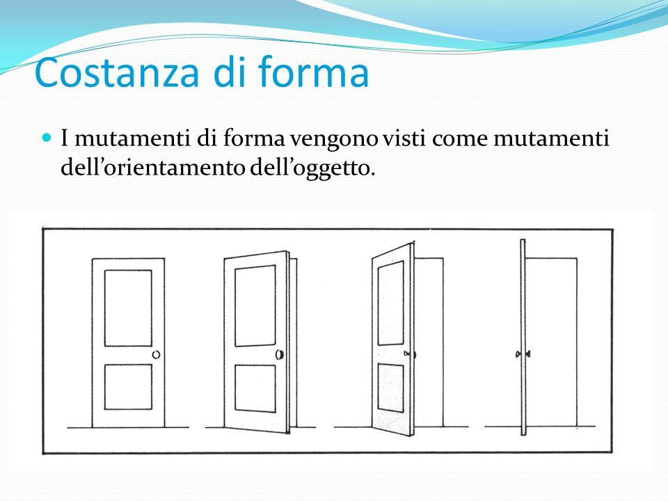 Costanza di forma I mutamenti di forma vengono visti come mutamenti dell'orientamento dell'oggetto.