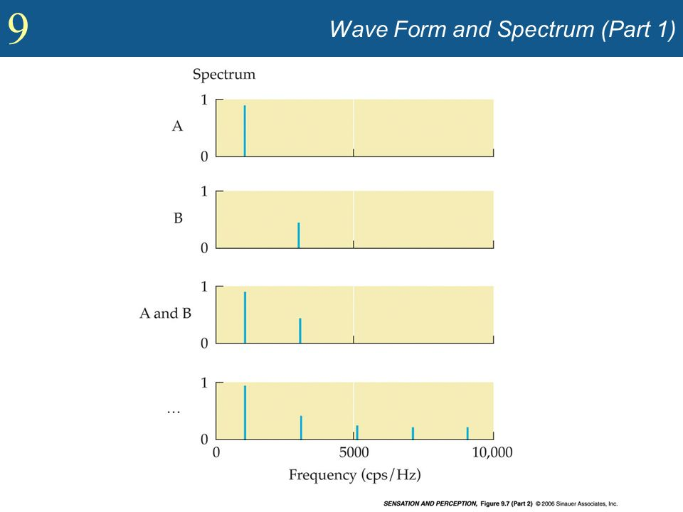 Wave Form and Spectrum (Part 1)