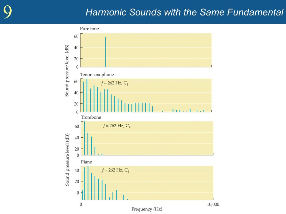 Harmonic Sounds with the Same Fundamental