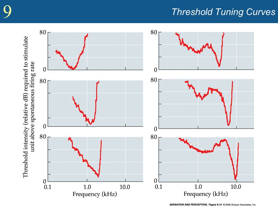 Threshold Tuning Curves