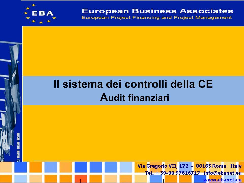 Il sistema dei controlli della CE