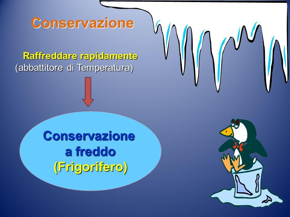 Conservazione Conservazione a freddo (Frigorifero)
