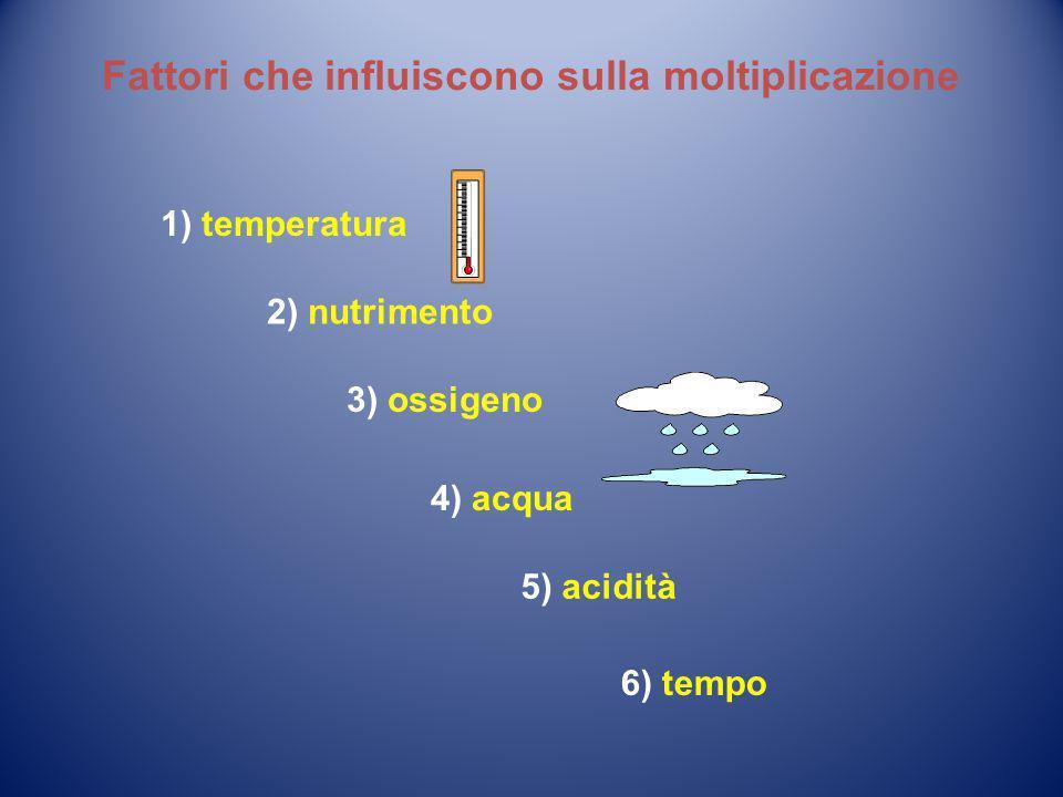 Fattori che influiscono sulla moltiplicazione