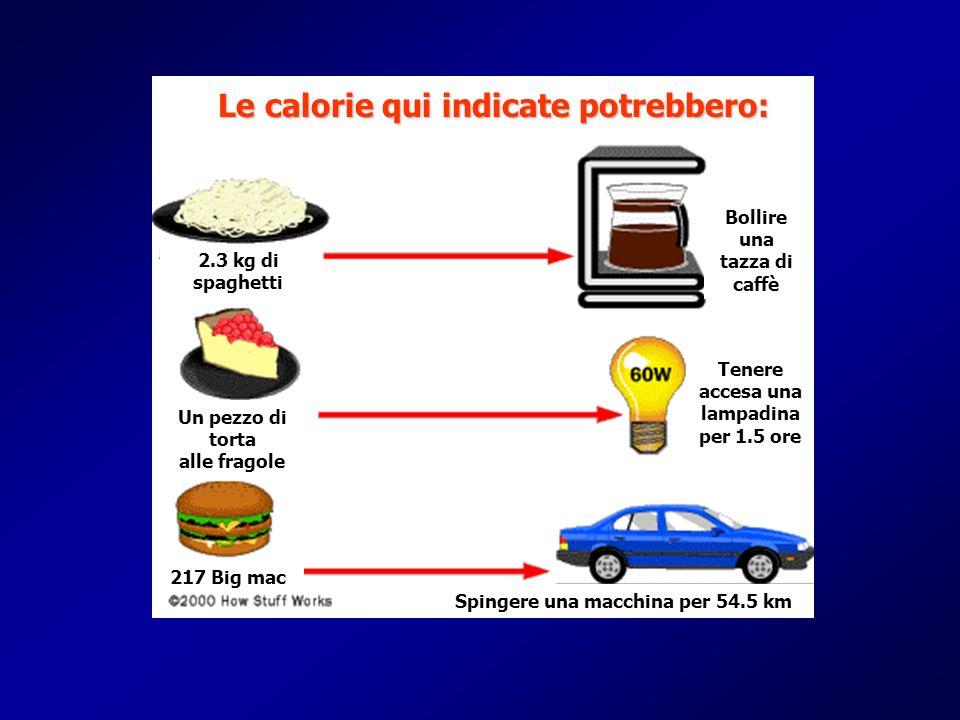 Le calorie qui indicate potrebbero: