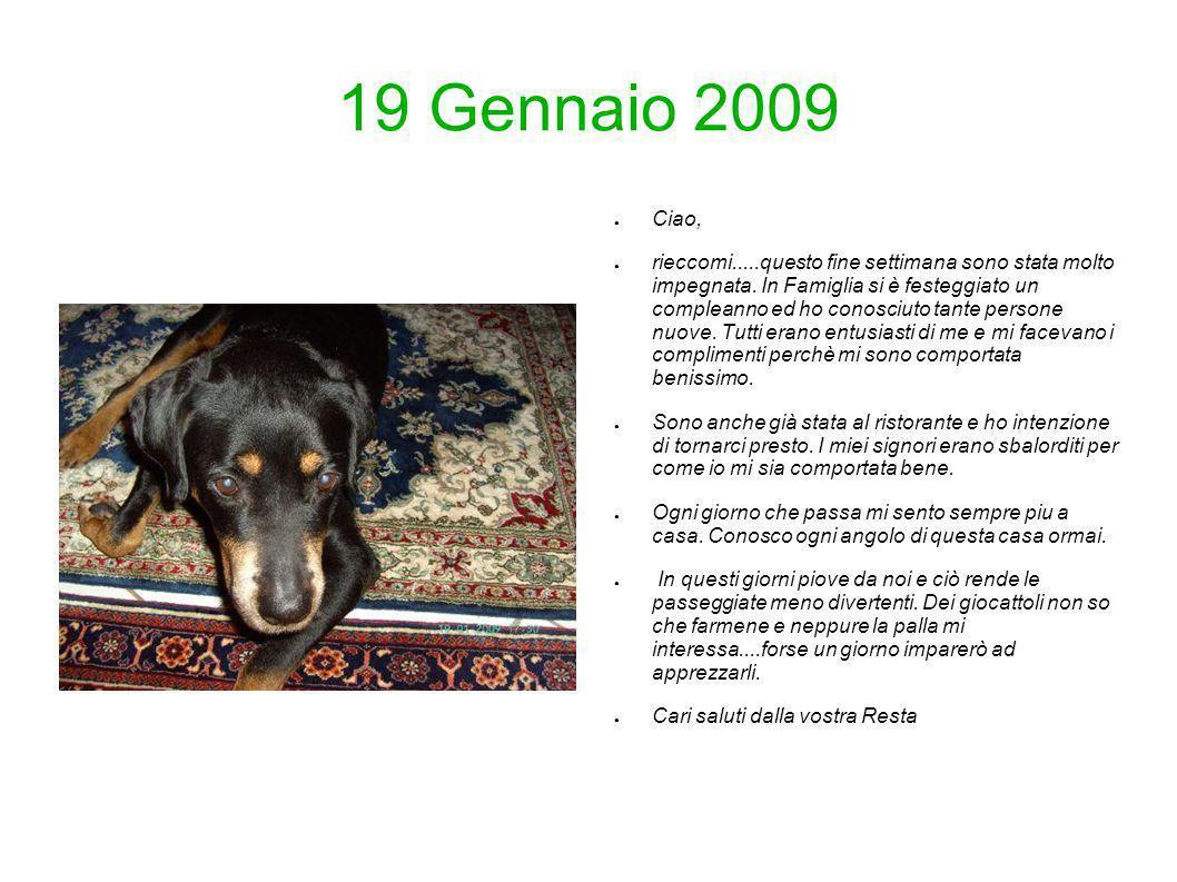19 Gennaio 2009 Ciao,