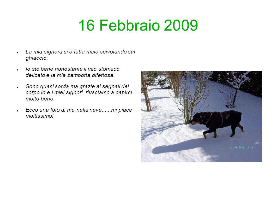 16 Febbraio 2009 La mia signora si è fatta male scivolando sul ghiaccio.