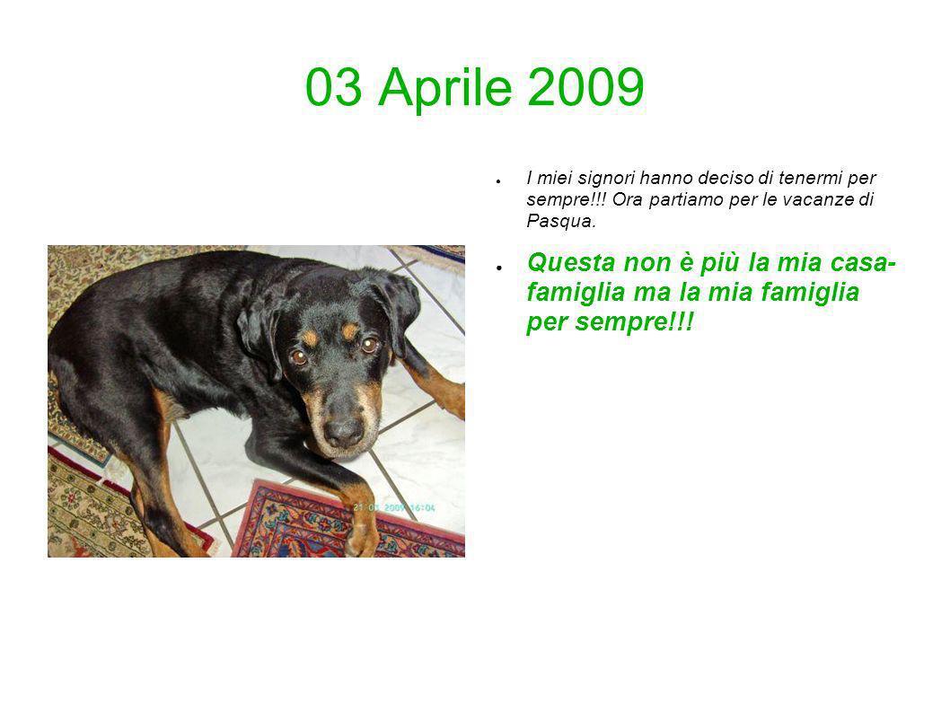 03 Aprile 2009 I miei signori hanno deciso di tenermi per sempre!!! Ora partiamo per le vacanze di Pasqua.