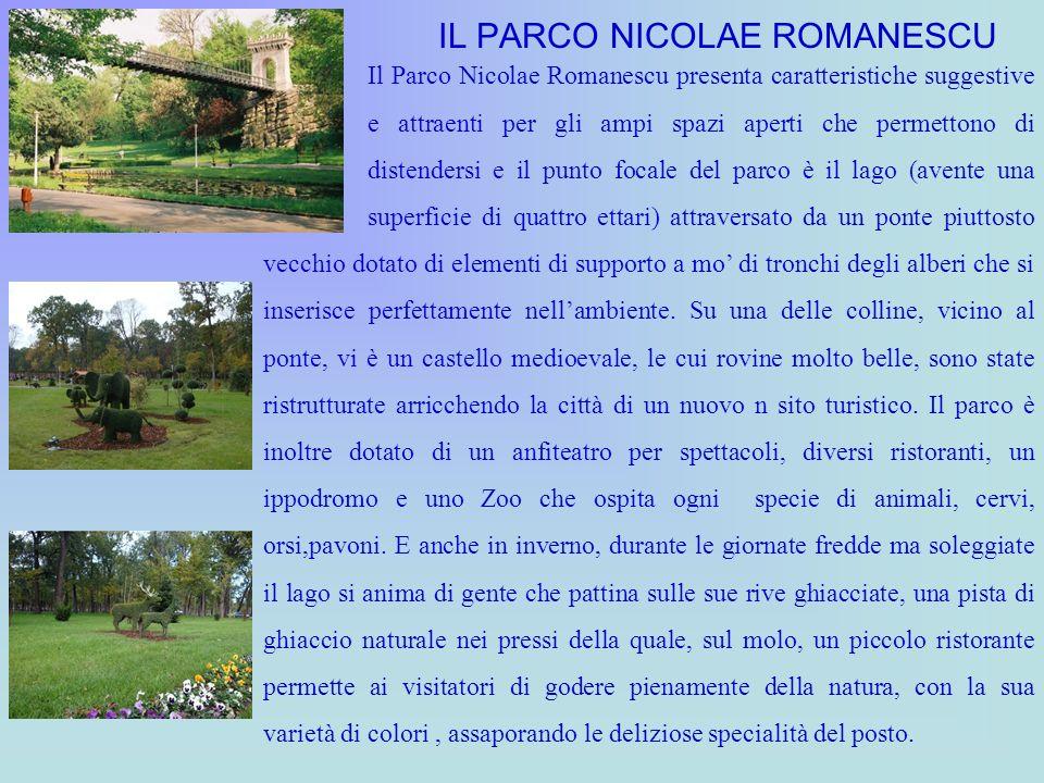 IL PARCO NICOLAE ROMANESCU