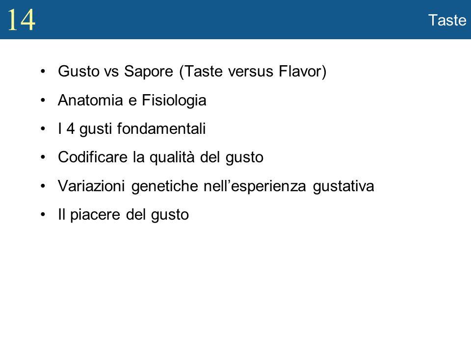 Taste Gusto vs Sapore (Taste versus Flavor) Anatomia e Fisiologia. I 4 gusti fondamentali. Codificare la qualità del gusto.