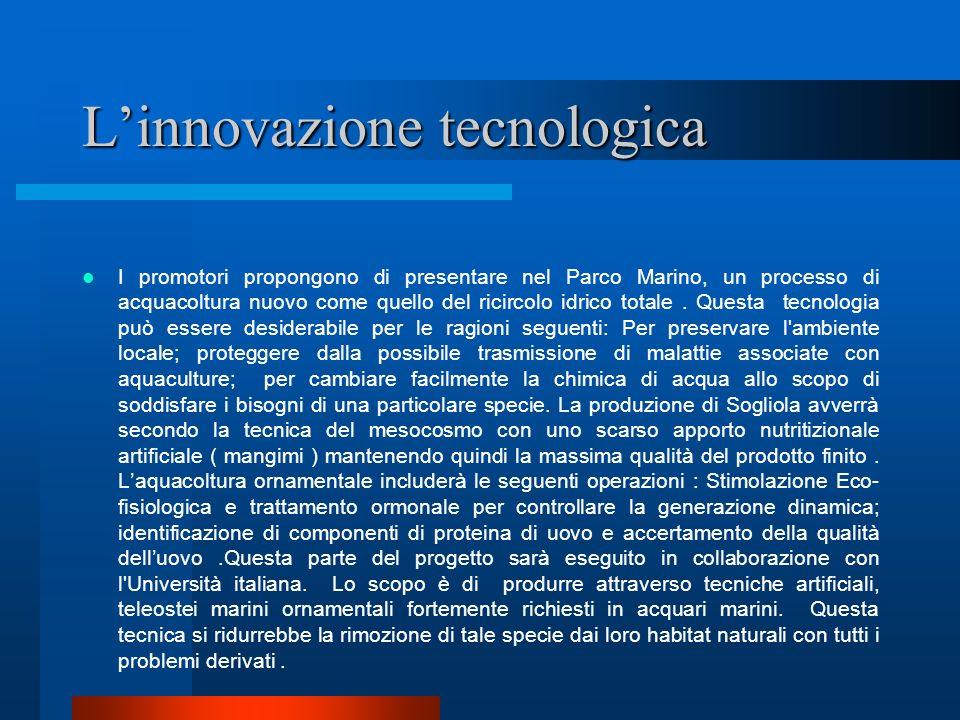 L'innovazione tecnologica