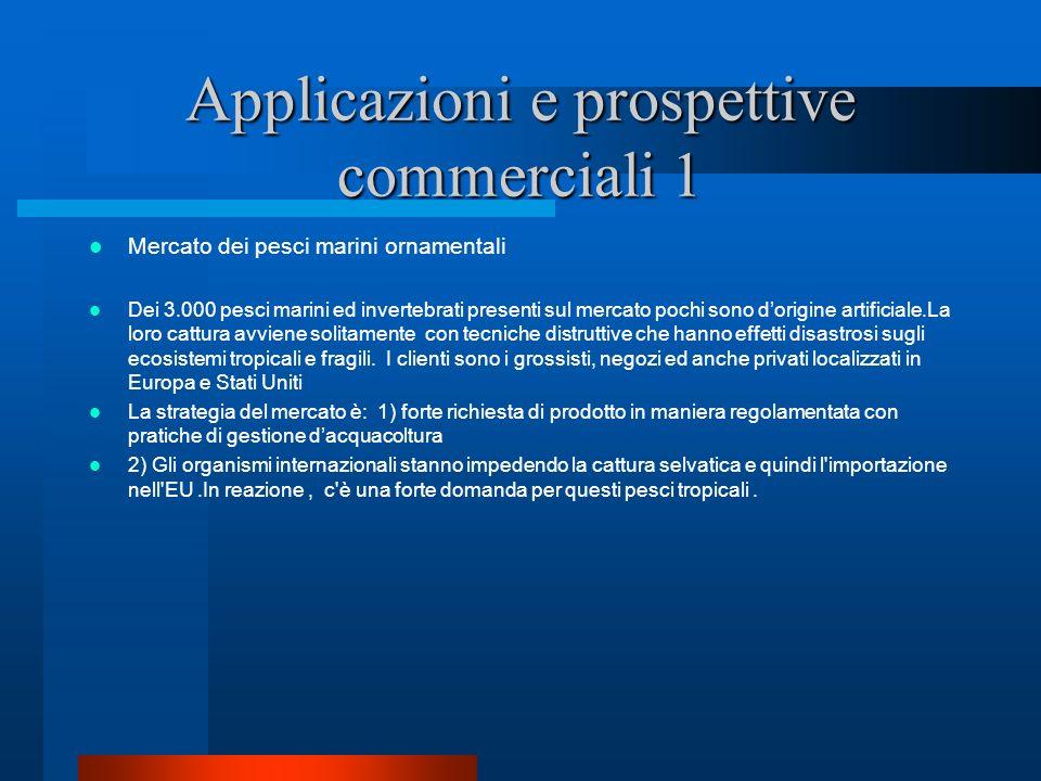 Applicazioni e prospettive commerciali 1