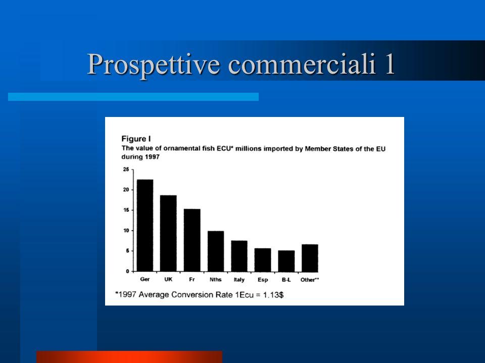 Prospettive commerciali 1