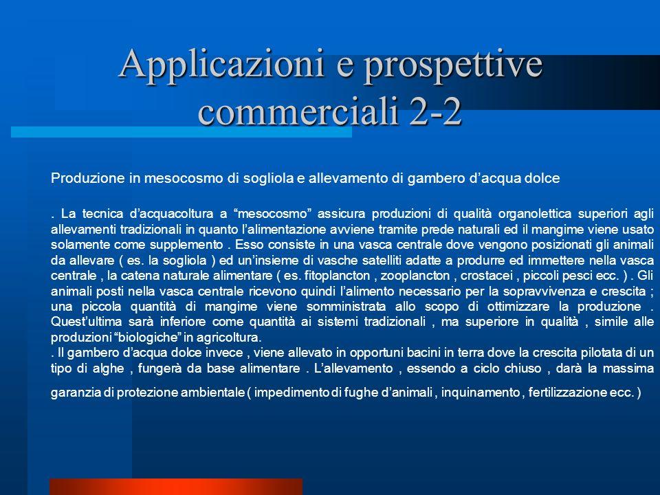 Applicazioni e prospettive commerciali 2-2