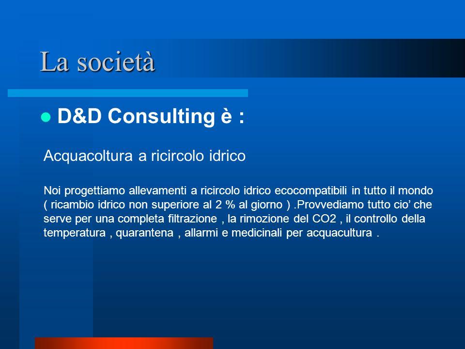 La società D&D Consulting è : Acquacoltura a ricircolo idrico
