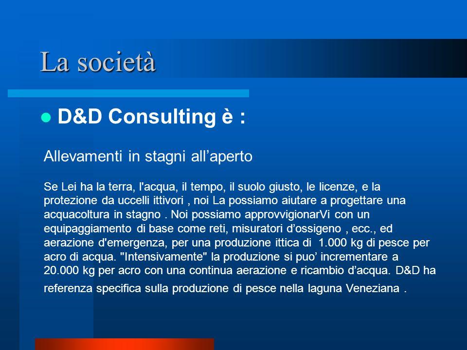 La società D&D Consulting è : Allevamenti in stagni all'aperto