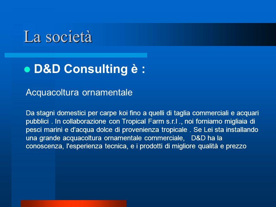 La società D&D Consulting è : Acquacoltura ornamentale