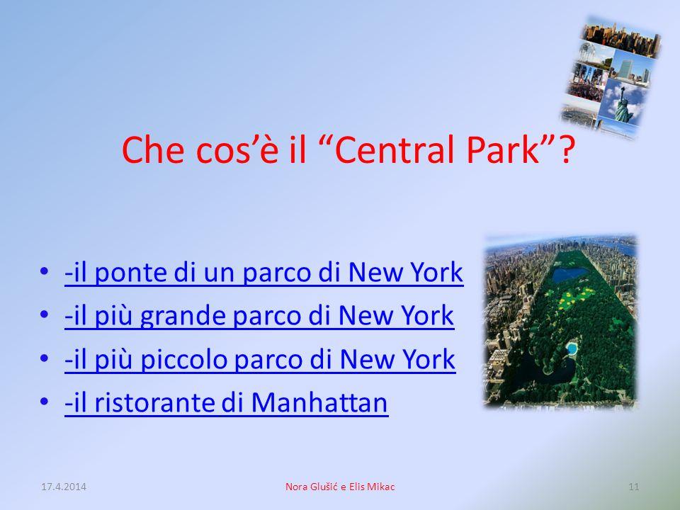 Che cos'è il Central Park