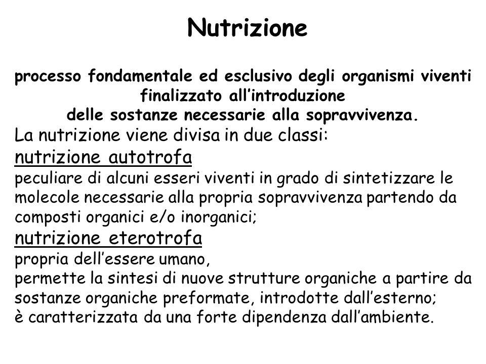 Nutrizione nutrizione autotrofa nutrizione eterotrofa