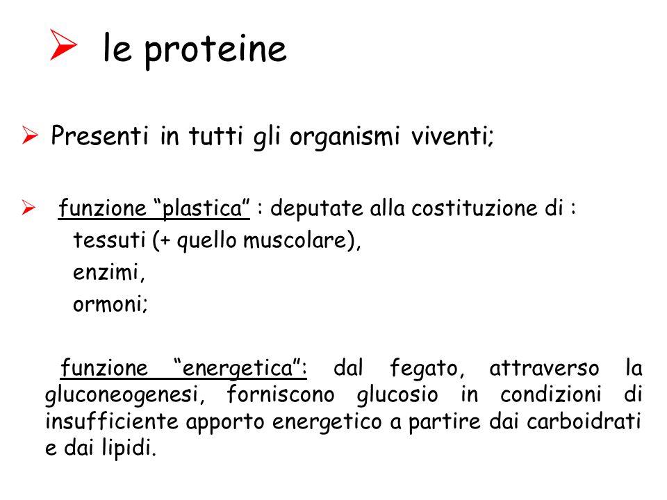le proteine Presenti in tutti gli organismi viventi;