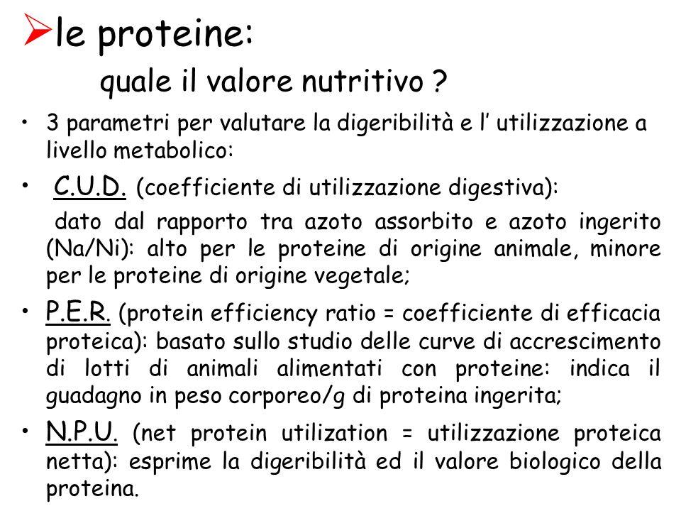 le proteine: quale il valore nutritivo