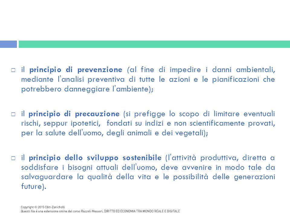il principio di prevenzione (al fine di impedire i danni ambientali, mediante l'analisi preventiva di tutte le azioni e le pianificazioni che potrebbero danneggiare l'ambiente);