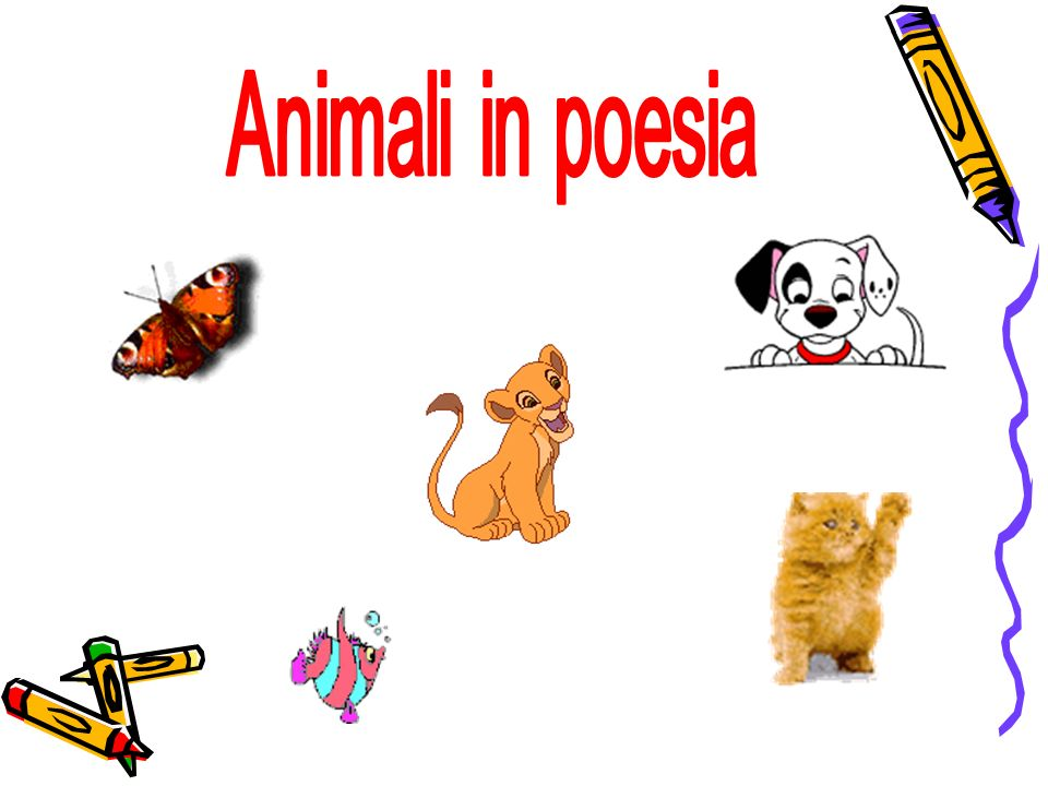Animali in poesia