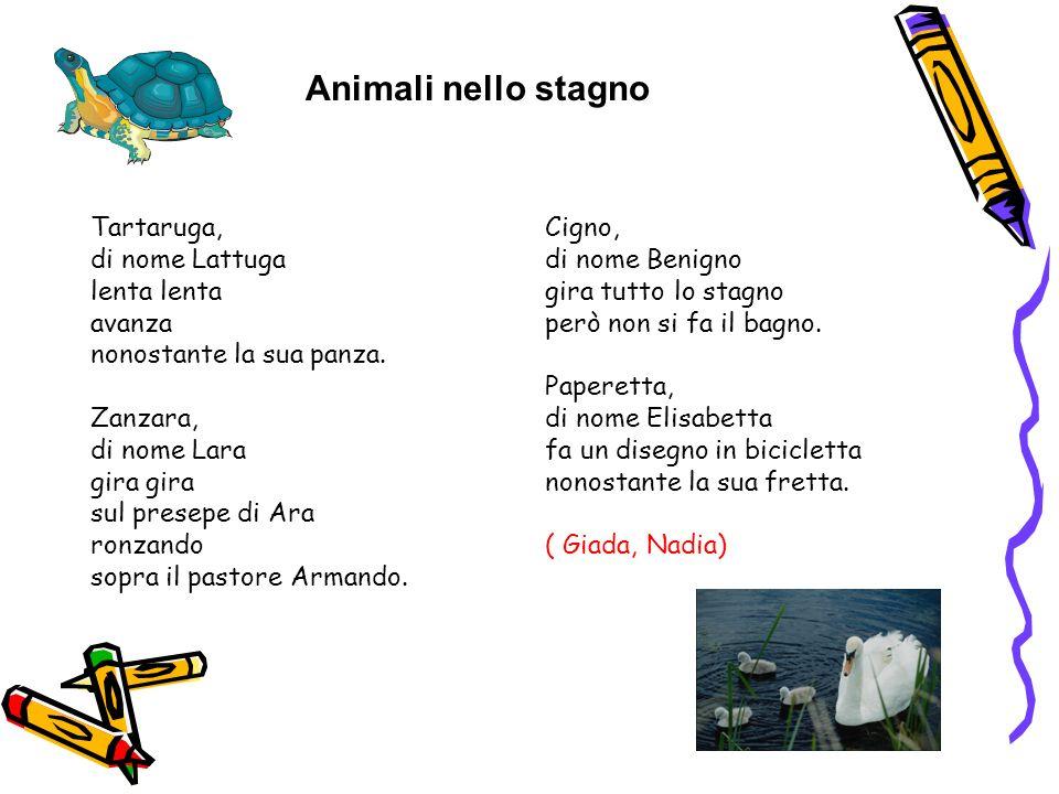 Animali nello stagno Tartaruga, di nome Lattuga lenta lenta avanza