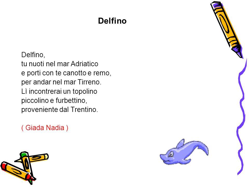 Delfino Delfino, tu nuoti nel mar Adriatico