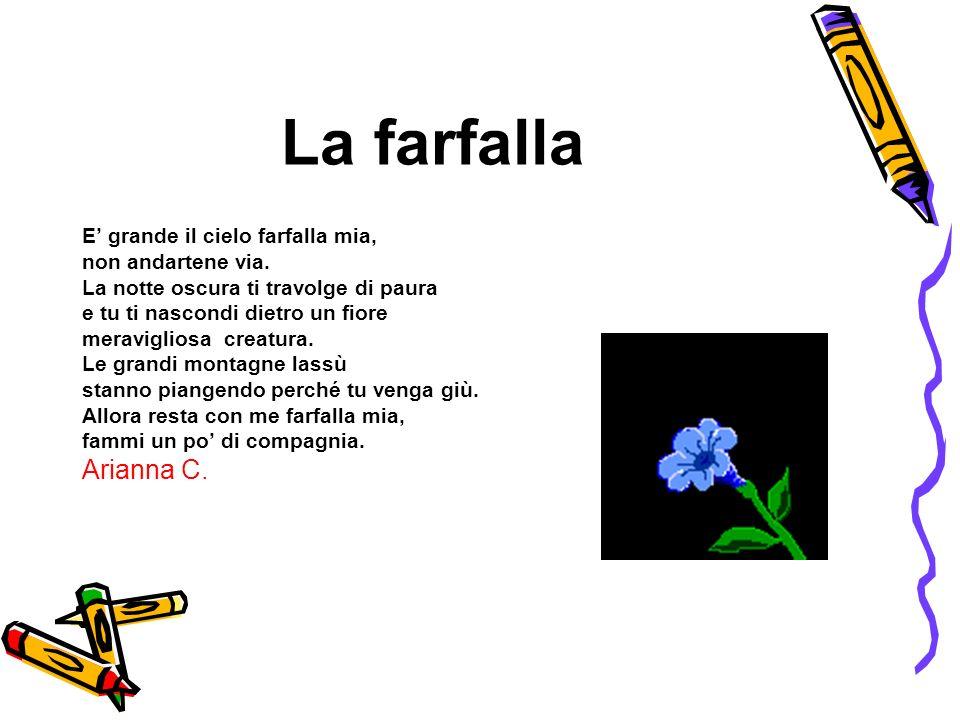 La farfalla Arianna C. E' grande il cielo farfalla mia,