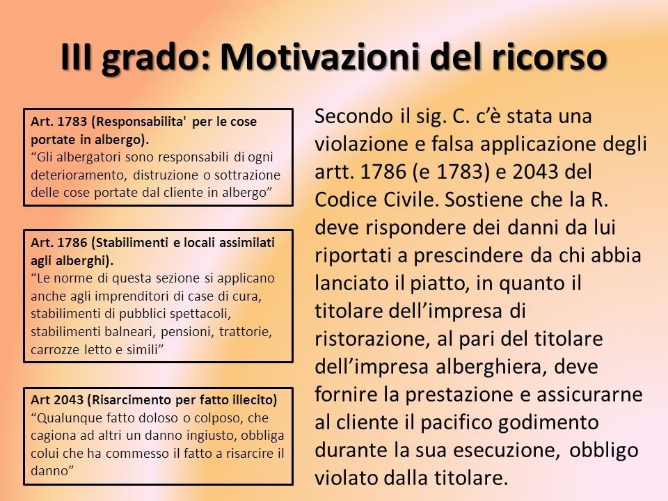 III grado: Motivazioni del ricorso