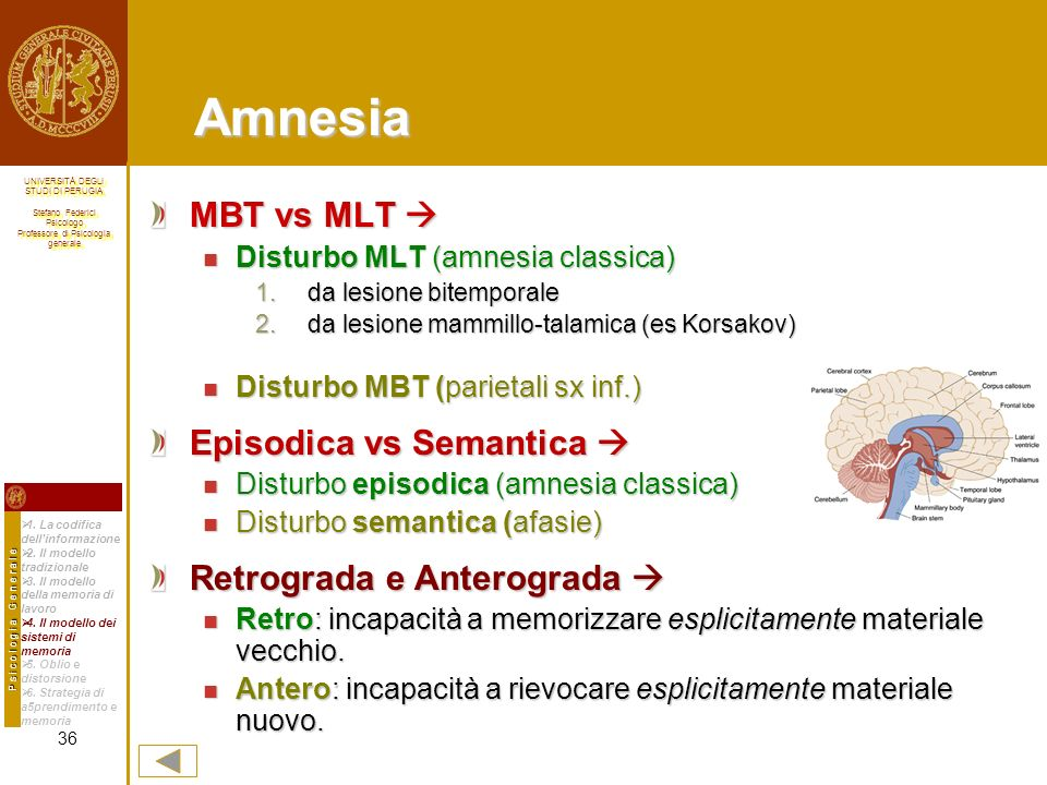 Amnesia MBT vs MLT  Episodica vs Semantica 